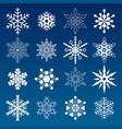 set of winter snowflakes vector image