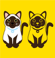 Siamese cat vector image