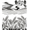 landscape country of ripe wheat ears swaying in vector image