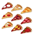 Pizza icon set vector image
