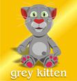 grey kitten vector image