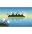 Landscape of flower on lake at spring vector image