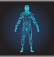 low poly wireframe human body abstract vector image