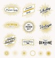 Set of vintage sunburst frame and label design vector image