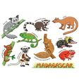 Set of cute animals cartoon in the Madagascar vector image vector image
