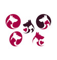 pet shop label set animals cat dog parrot vector image