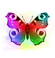 Butterfly Inachis Io Iridescen colours vector image