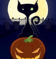 halloween night black cat vector image