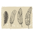 Vintage feather vector image vector image