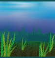 seabed with seaweed vector image