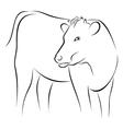 Cow on sketch vector image vector image