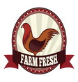 Farm fresh chicken resize vector image