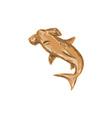 Hammerhead Shark Drawing vector image