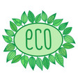 eco sign in oval frame with leaves around vector image
