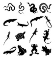 Reptiles icons set vector image