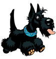 cartoon scottish terrier vector image vector image