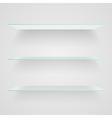 Glass shelves vector image vector image