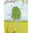 birch and swallows summer landscape vector image