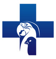 bird veterinary icon vector image