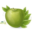 green apple and leaves vector image