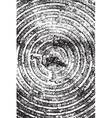 Concentric Texture vector image vector image