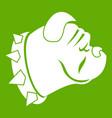 bulldog dog icon green vector image
