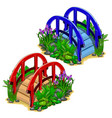 red and blue decorative bridges with plants vector image