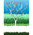 white tree vector image vector image