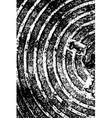 Concentric vector image vector image