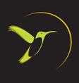 Hummingbird b1 vector image vector image