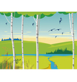 birch landscape and swallows vector image