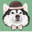 hipster dog Alaskan Malamute vector image vector image
