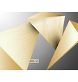 triangle 3d realistic gold and wood texture vector image