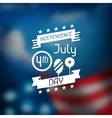 United States of America Independence Day greeting vector image