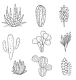 Succulents plant set Botanical black and vector image