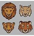 lion stylized vector image