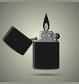pocket lighter icon in flat style vector image