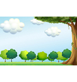 A clear blue sky and the green trees vector image