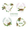 Flower Banners and Tags vector image vector image