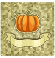 pumpkin on geometric background vector image