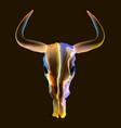 bright bull skull over dark vector image