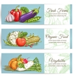 Vegetables banners Farm fresh organic products vector image