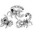 Yellow Fattail Scorpion vector image vector image