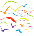 Seamless with colored birds vector image vector image