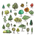 Set of hand drawn colorful trees Ink style vector image