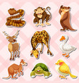 sticker set with reptiles and other animals vector image
