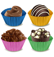 Four kinds of mouthwatering chocolates vector image