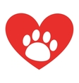 animal footprint in heart isolated icon design vector image