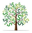 Money tree isolated vector image