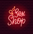 sex shop neon sign vector image